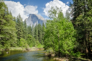 A beautiful view of Half Dome.