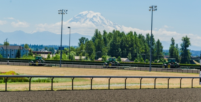 Spectacular Mount Rainier is clearly visible from the track.