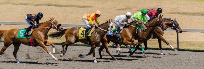 Emerald Downs-5
