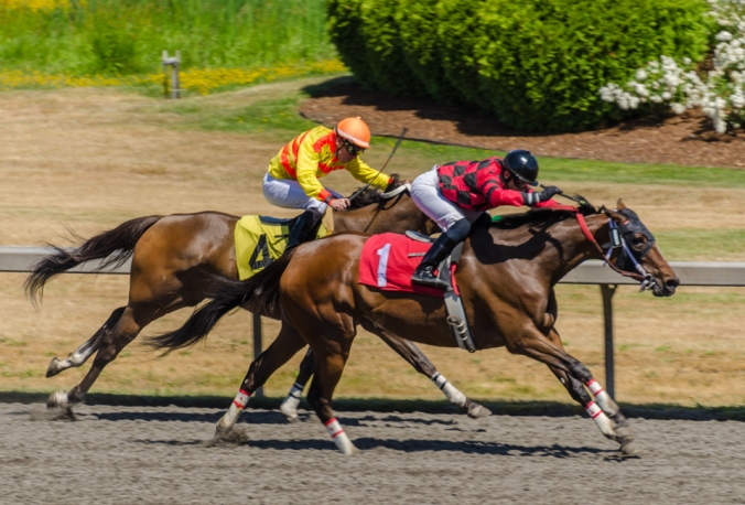 Emerald Downs-6