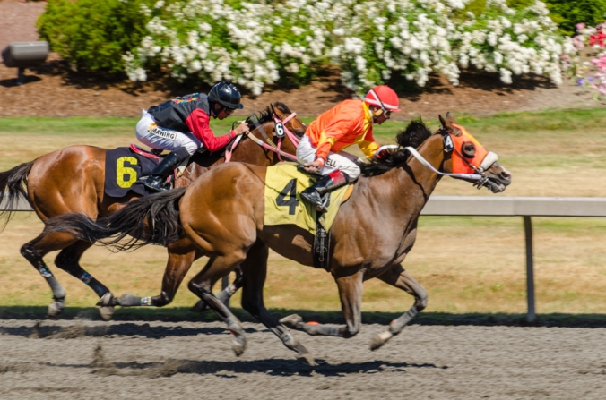 Emerald Downs-8