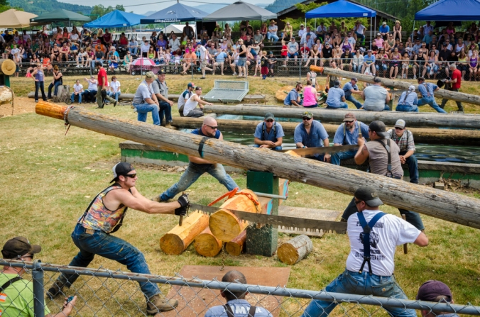 Four teams simultaneously  raced to saw through the log.