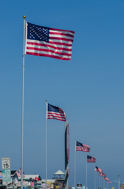Yesterday was 4th of July and many flags were flying in the marina.