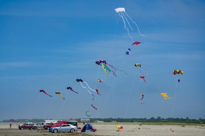 The colorful kites were awesome!