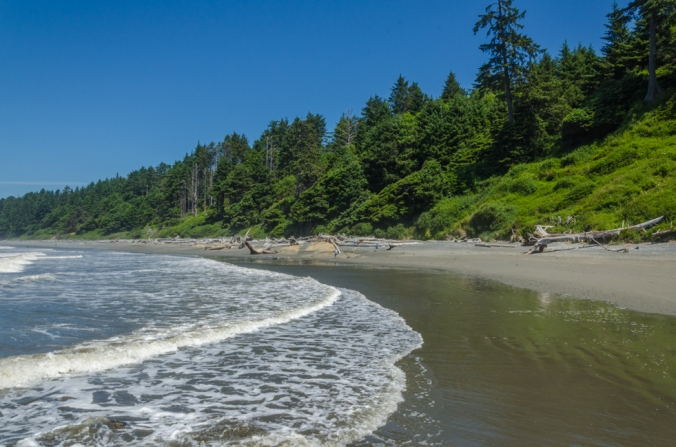 The beaches in the Olympic National Park are beautiful!