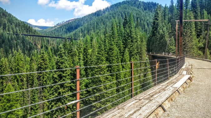The high trestles are impressive in the midst of all the trees.