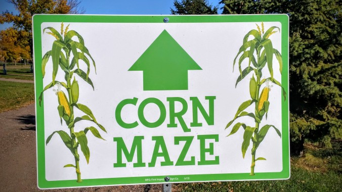 How cool.... a huge corn maze!