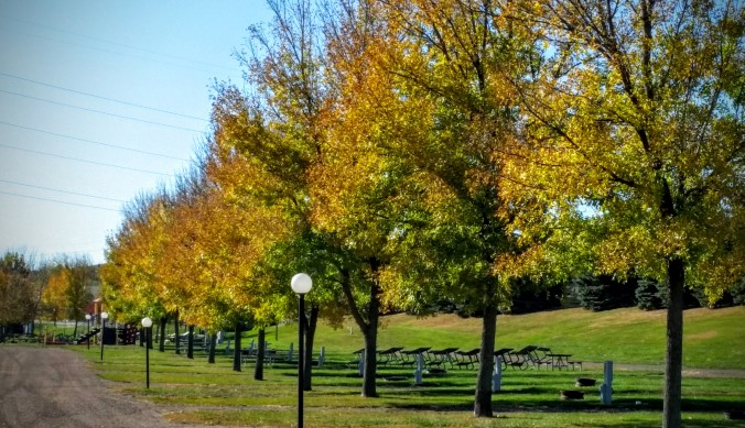 This RV park is filled with beautiful fall colors!