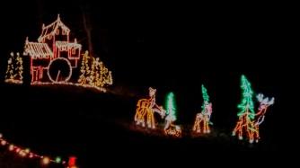 Lights 7