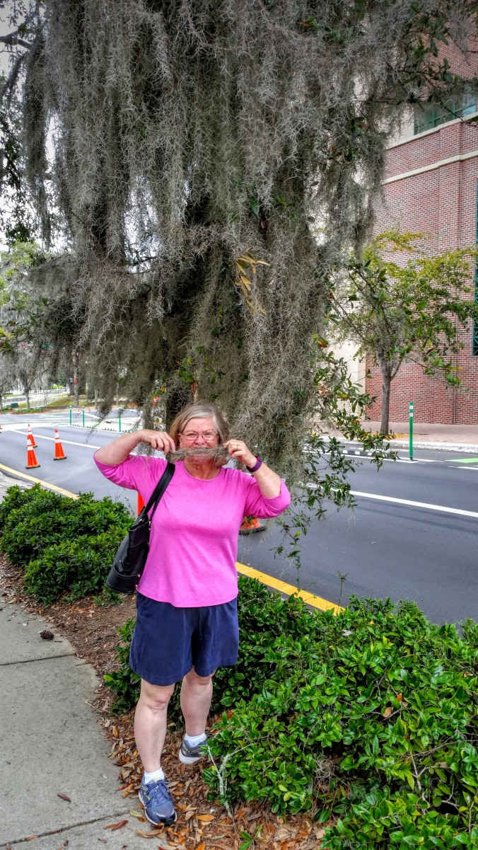 Charlene tree moss