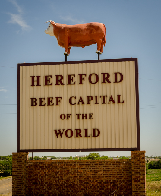 Hereford-2