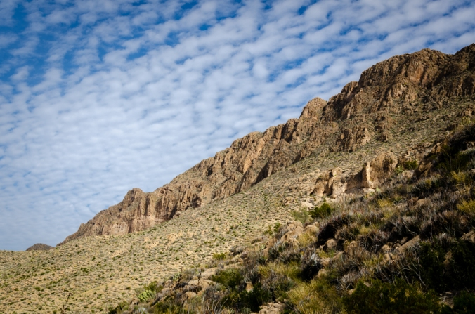 Big Bend Natl Park-11