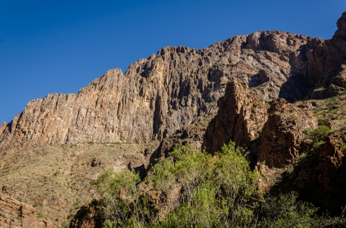 Big Bend Natl Park-5