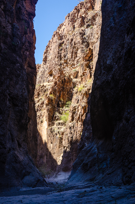 Big Bend Rnch State Park-1