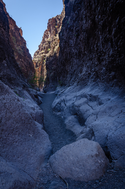 Big Bend Rnch State Park-2