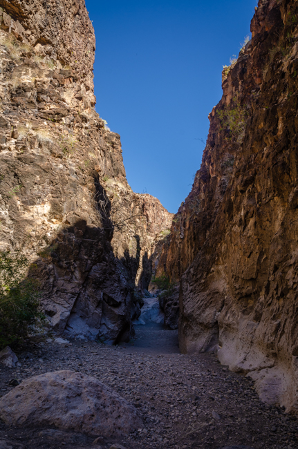 Big Bend Rnch State Park-3