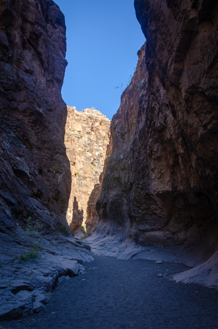 Big Bend Rnch State Park-7