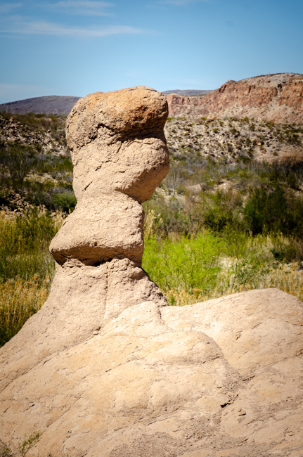 Big Bend Rnch State Park-8