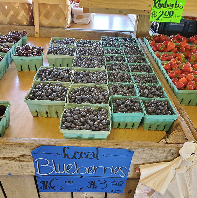 Blueberries local