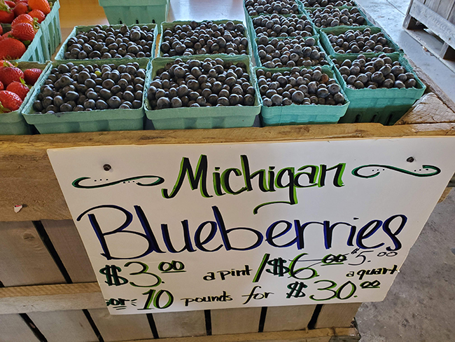 Blueberries Michigan